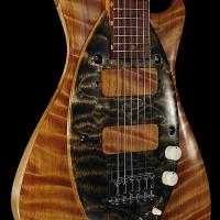 guitar111bodyfrntdtl1
