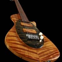 guitar111bodyfrntdtl3