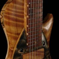 guitar111bodyfrntdtl5