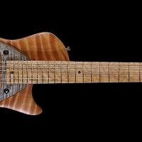guitar119fullfrnt