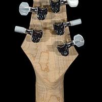 guitar119headbck