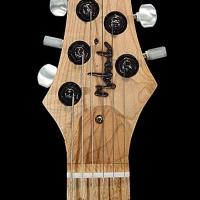 guitar119headfrnt