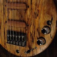 guitar110bodyfrntdtl5
