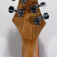 guitar148headbck