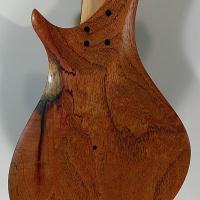 guitar113bodybck