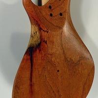guitar113bodybckdtl1