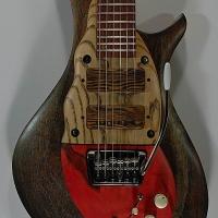 guitar113bodyfrnt