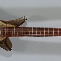 guitar113fullfrnt