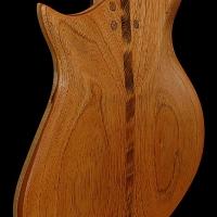 guitar147bodybckdtl1