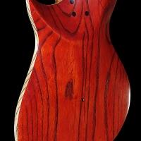 guitar98bodybckdtl1