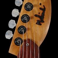 guitar103headfrnt