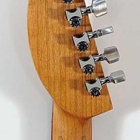 guitar105headbck