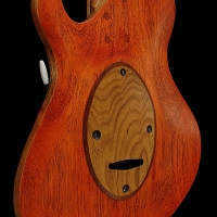 guitar160bodybckdtl