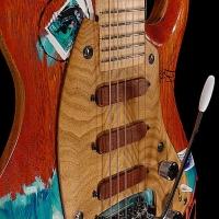 guitar160bodyfrntdtl5