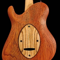 guitar169bodybck