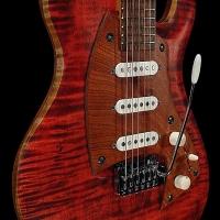 guitar169bodyfrntdtl1