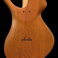 guitar125bodyback