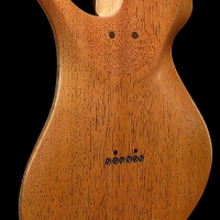 guitar125bodybackdtl1