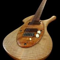 guitar125fullfrntdtl4