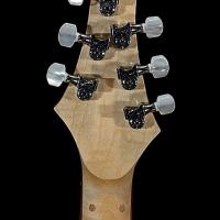 guitar125headbck