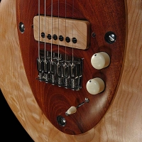 guitar95bodyfrntdtl4