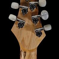 guitar95headbck