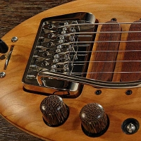 guitar97bodyfrntdtl4