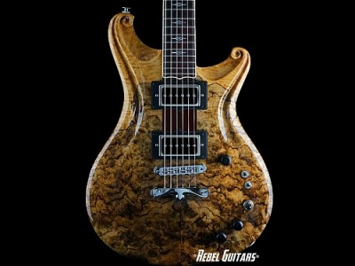 Scott-Walker-Santa-Cruz-Spalted