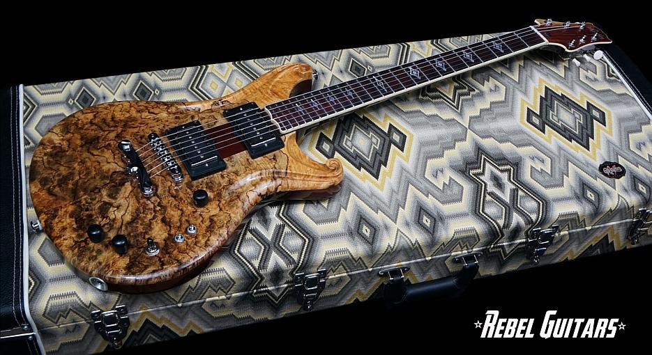 Scott-walker-Santa-Cruz-Guitar